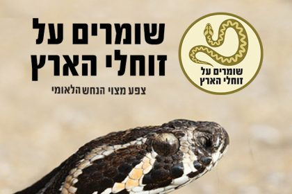 save snakes in israel