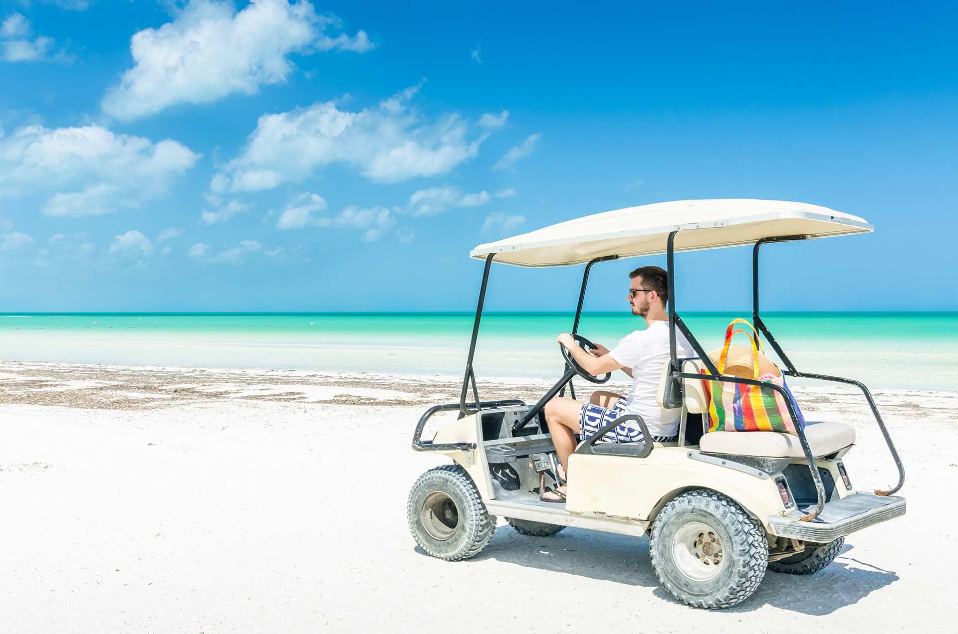 cars and carts rental